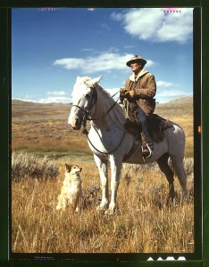 Shepherd with his horse and dog on Gravelly Range, Madison County, Montana, 1942. Russell Lee