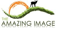 Amazing-Image-banner3
