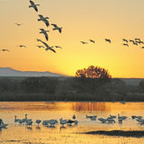 Favorite Photo Places: An Amazing Wildlife Refuge