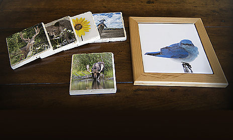 Fuse Your Photos to Stone and Tile for Unique Gifts and Stunning Displays